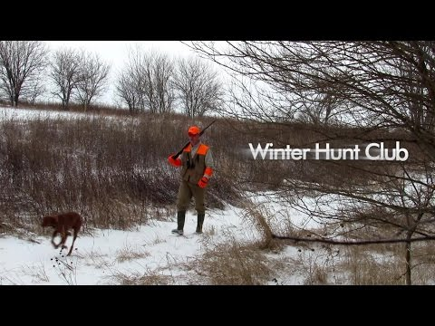 Winter Club Pheasant Hunting