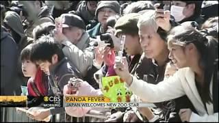 Tokyo zoo celebrates birth of baby panda