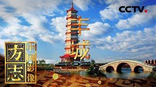 《中国影像方志》 第307集 江西丰城篇| CCTV科教