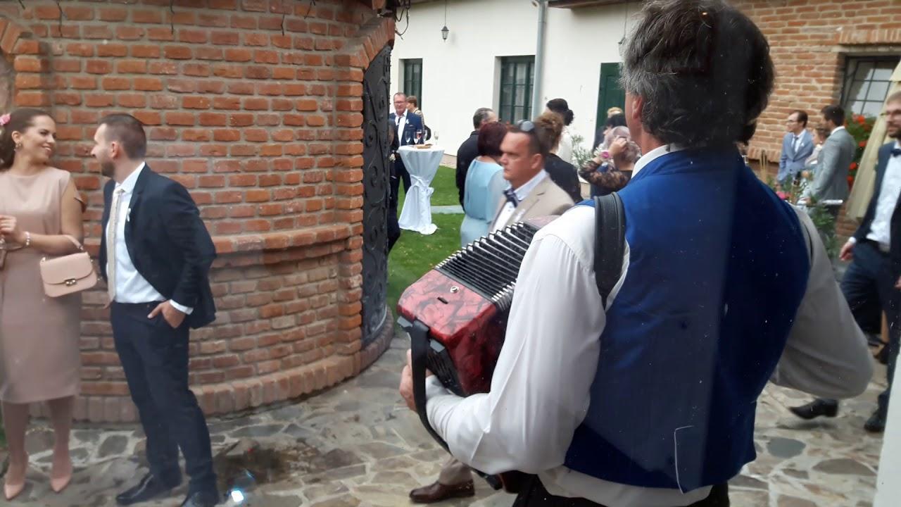 Harmonikár Peťo - Pálenica Jelšovce