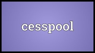 Cesspool Meaning