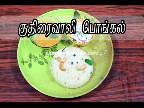 Kuthiraivali Pongal | Barnyard Millet Pongal | குதிரைவாலி பொங்கல் | Samayalkurippu