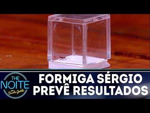 Monólogo: Formiga Sérgio prevê resultados dos jogos de sexta do Mundial | The Noite (05/07/18)