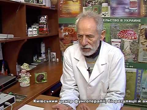 Шиитаке: полезные и лечебные свойства, вред и применение