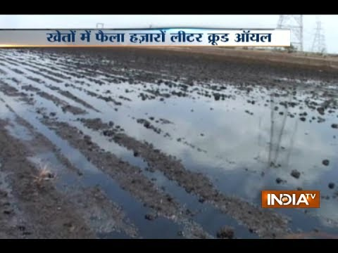 IOC pipeline leak near Jamnagar, oil spreads on agricultural land