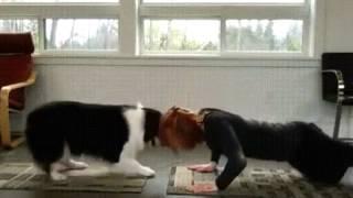 Собака с хозяйкой занимаются йогой)))