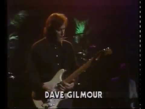 David Gilmour - Run like hell