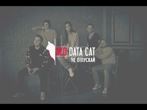 Red Data Cat - Не отпускай