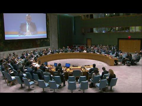 UN Middle East Peace envoy briefs the UN Security Council (15 May 2018)