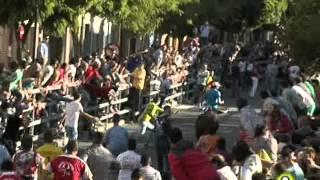 Toro de la Feria 2014 - Pasteloso - Medina del Campo