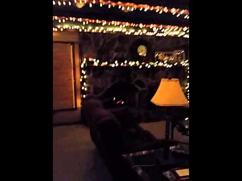 Christmas lights in a log cabin great chillin atmo