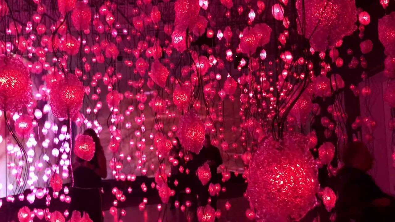 Pipilotti Rist Pixel Forest 1 New Museum New York Youtube