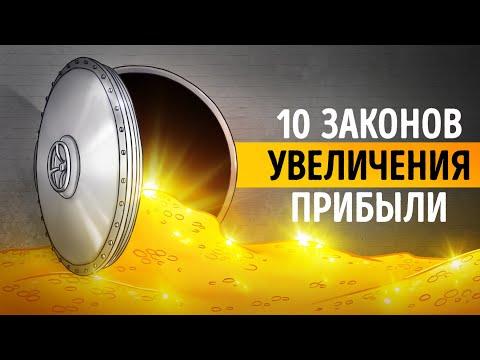 «10 Законов увеличения прибыли». Ирина Нарчемашвили | Видео Саммари