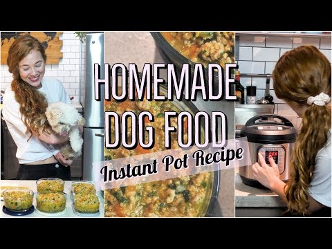 homemade-+-healthy-dog-food-recipe--using-the-instant-pot|-cooking-for-your-dog-2🐶
