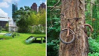 Doğayla Neden Başa Çıkamayız?
