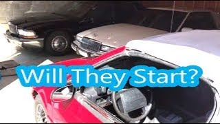 Waking Up My Allante, Riviera, Roadmaster, S600, & Buggy For Spring