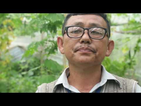 Organic farming in kathmandu