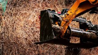 Cat® D Series Skid Steer Loaders, Multi Terrain Loaders and Compact Track Loaders at Work (no text)