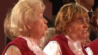 В Курске одиноких пенсионеров пригласили на бесплатное представление в цирк