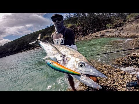 GIANT TREVALLY ROCK FISHING! Part 4, Tropical Fever!