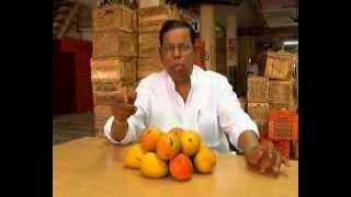 Mango Ethylene Ripening Process movie by KrishiMart at Mumbai APMC Fruit market 2012