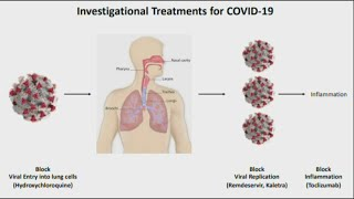 What are some potential treatments for the coronavirus?