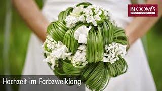 Hochzeit im Farbzweiklang