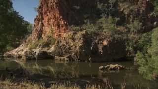 Duncan Road, a little known Kimberley gold nugget