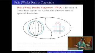 Singular vector fields fąr away from horseshoe - Shaobo Gan