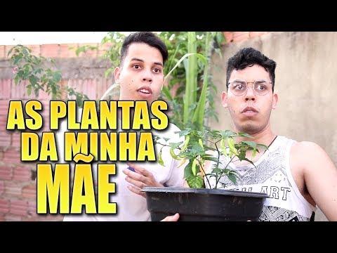 TATUAGEM E AS PLANTAS DA MÃE