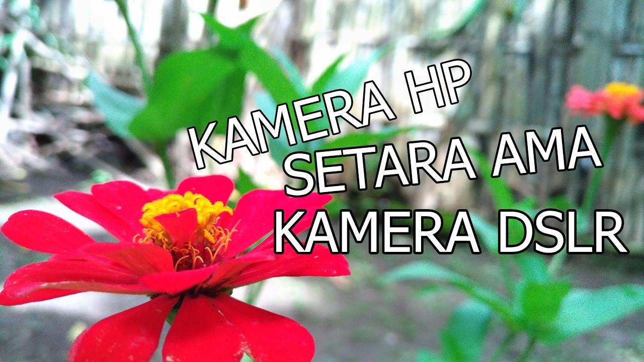 Wow Kamera HP mirip kamera DSLR#Review hasil kamera ASUS Zenfone 3 ...