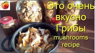 Очень Вкусно Грибы на зиму лисички mushrooms recipe Грибы 2019 Лисички польза