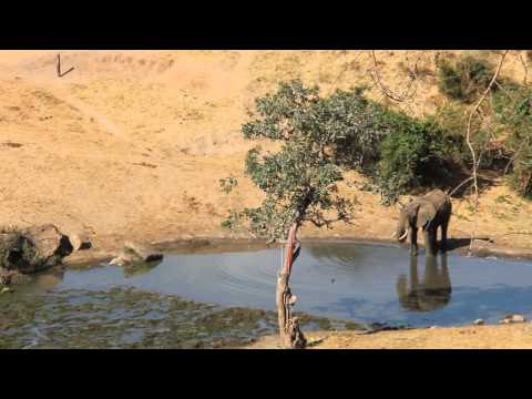 Rhino Valley Lodge, Tsavo West, Kenya