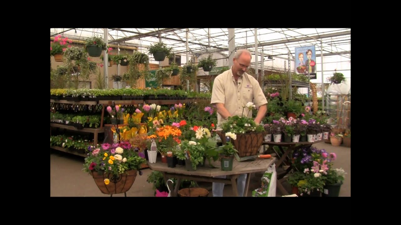 Elegant Hanging Baskets for Mom with Scott Pearce - YouTube