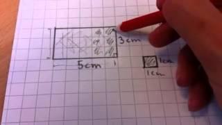 Areal og omkrets av et rektangel
