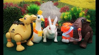 Learn Wild Animals Names And Sounds For Kids  | Electric Animals Video For Kids