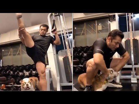 Salman Khan Amazing Workout For Dabangg 3 Shirtless Scene | Gym Workout
