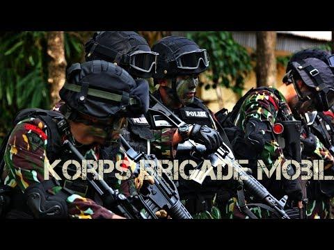 BRIMOB - Special Police of Indonesia - Mobile Brigade Corps