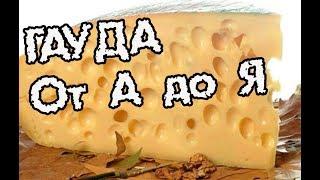 видео: Делаем сыр Гауда подробно пошагово.