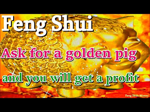 eebc25e50 Feng Shui. 2019 year of the Pig. Money. Luck and Prosperity - YouTube