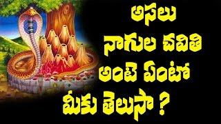 నాగుల చవితి అంటే ఏంటో తెలుసా ? | Nagula chavithi || Unknown Facts || Eagle Media Works