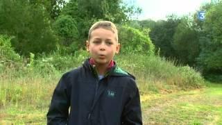 Felix, Jean et les oiseaux. Siffleurs en Baie de Somme