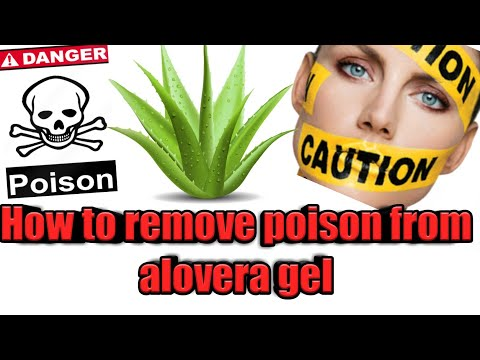 how to Remove Poison from Aloevera Plant Before Use