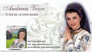 Andreea Voica - In Banat, la mine acasa