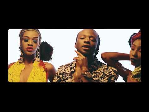 [VIDEO]: Del'B – Die For Yuh Whyne (ft. Runtown & Timaya)