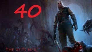The Witcher Прохождение Серия 40 (Профессор и Королева кикимор)
