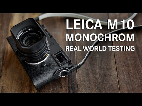 Real World Shooting with the Leica M10 Monochrom