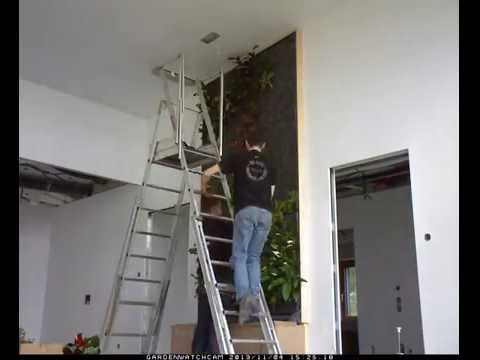 Mur vegetal pas doovi - Cadre vegetal jardiland ...