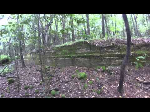 Drew Mansion Ruins at The Ghost Town of Ellaville in Madison County