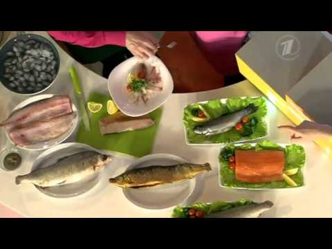 Муксун. Рыба холодных вод